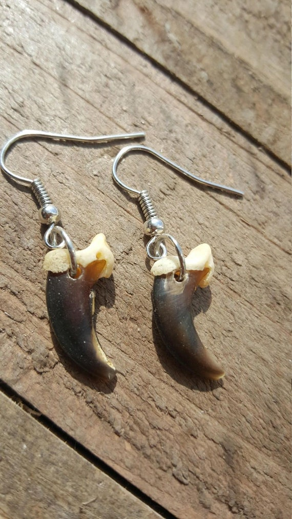 Handmade Real Coyote Claw Earrings Native American Tribal Outdoor Fashion Art Collection