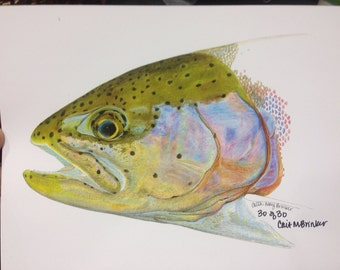 "MINI 6x8"" Rainbow trout Print limited edition"