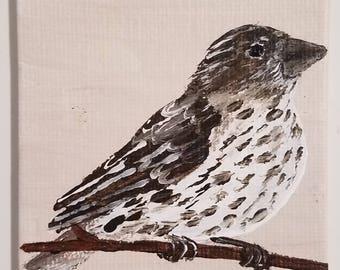 Tiny Bird Painting Magnet