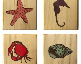 Coaster Nautical Beach Gift Set: Sea Shell, Crab, Star Fish, Sea Horse Wood Coasters