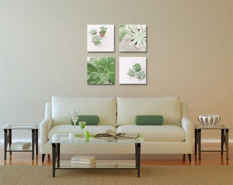 Succulent Photo - Houseplants - Succulents - Set of Four (4) Succulent Photographs - Gallery Wrapped Canvas - Green White Home Decor