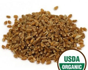 Wheatgrass Sprouting Seeds, Organic