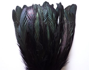 IRIDESCENT Black Coque feathers, rooster tail real feathers, strung, for millinery, crafts, costumes / 6-8 inches (15-20 cm) long / F56-6