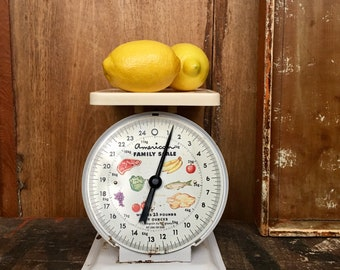 Vintage American Family Scale Farmhouse Country Chic Decor Props