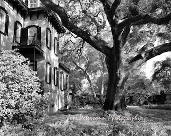 Historic Savannah Photos. Old house photography. Striking Halloween wall decor. Black & White wall art home decor. Tree photography prints.