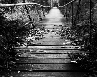 Adirondacks Print - New York Photography - Bridge in the Woods - Upstate NY Photography - Black and White New York - Mounted Print