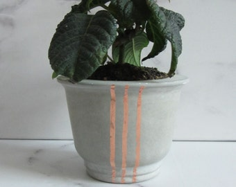 Concrete planter / vase / small vessels and vascular plants/flowers / storage/minimalist