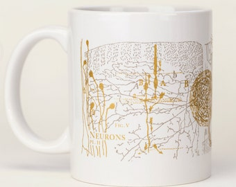 Neurons Mug   Brain Anatomy Ceramic Coffee Mug, Anatomical Brain, Neuroscience, Nursing, Greys Anatomy, Nurse, Nursing, Teacher Gift Vintage
