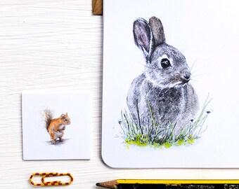 British Mammals Letter Writing Set - Illustrated Writing Paper