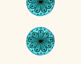 Ocean life Vintage poster forms eyes in nature Haeckel