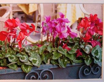 Photo: Flower Box