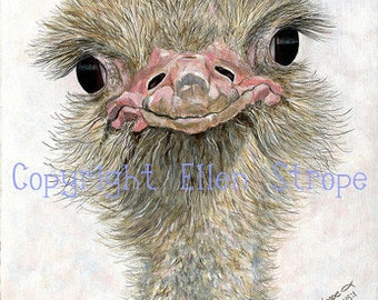 CARD, ostrich, ostrich decor, bird decor, note cards, Ellen Strope, castteam, home decor, ostrich cards