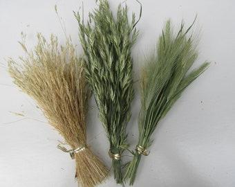 Dried grass stems bunch dry wild grass flower seeds wreath embellishment grass decoration dried flowers for crafts biodegradable
