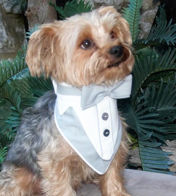 Pet Attire Dog Collar
