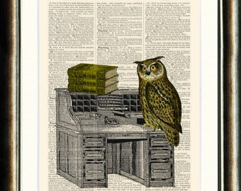 Owl on Bureau - Upcycled vintage image printed on a late 1800s Dictionary page Buy 3 get 1 FREE