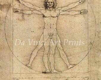 Fine Art Reproduction. The Vitruvian Man, c. 1490. Leonardo da Vinci Drawing - Fine Art Print.