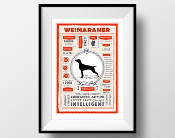 Weimaraner Breed Printable Poster, Digital Dog Breed Infographic Wall Art, Weimaraner Lovers Gift, Letterbox Red/Sea Green