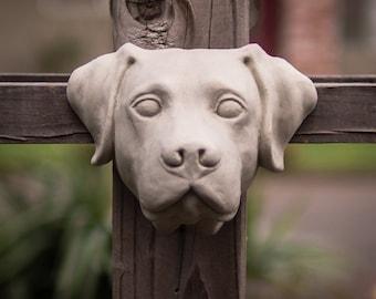 Labrador Retriever in Cement