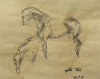 Live drawings, Horses Dressage Sketches at Dressage Test, Equine Art, Contemporary Fine Art