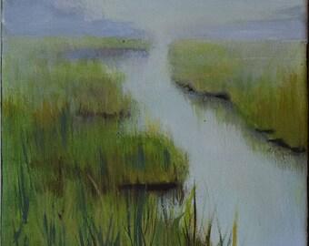 Jersey Shore Wetlands 1