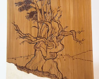 Bristlecone Pine tree, wood burning with painted highlights