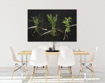herbs // food photography print // kitchen decor // dining room // canvas art // canvas print // rustic farmhouse wall art