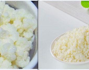 Milk Kefir Grains + Kefir Starter Culture - Satisfaction Guaranteed!