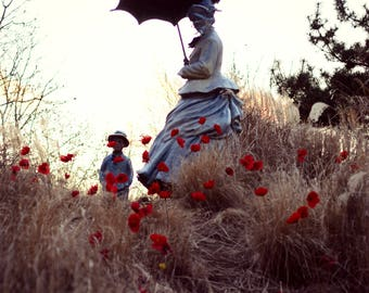 On Poppied Hill Photography Statue Collection, Grounds for Sculpture, Room Decor, Wall Art, Fine Art Photography