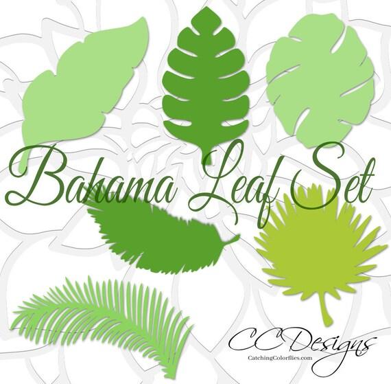 Large Paper Leaf Templates, Tropical Leaf SVG Cut Files, Large Paper Leaves,  Giant Leaf Template, Hawaiian Leaves, Flower Templates