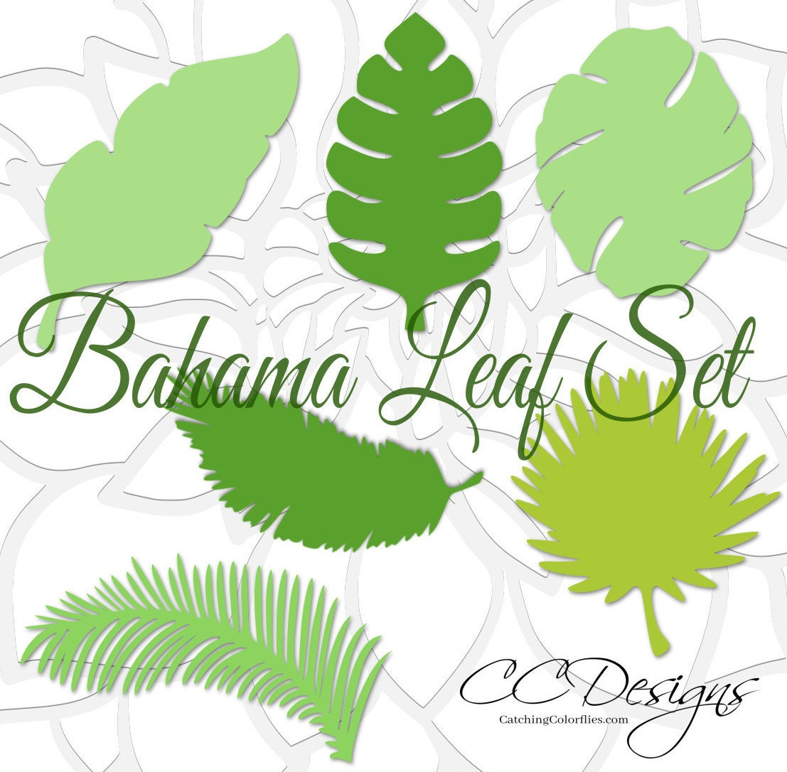 Large paper leaf templates tropical leaf svg cut files large paper this is a digital file izmirmasajfo