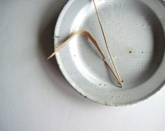 White Graniteware Plates, Set of Two