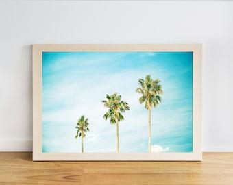 palmiers imprimés tropicaux arbre côtières décor côtier art mural palmier arbre décor plage photographie décoration nautique fine art photographie bleu aqua
