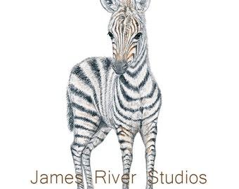 Zebra Art Zebra Painting Zebra Print. Zebra Watercolor Painting Animal Watercolor Animal Baby Zebra Nursery Art Zebra Safari Zebra Art Print