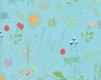 Moda THE FRONT PORCH Quilt Fabric 1/2 Yard By Sherri & Chelsi - Spray 37540 18