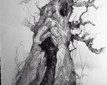 The one to hide in  - Blenheim tree series