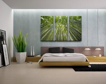Triptych artwork, Kyoto, Arashiyama Bamboo Forest, Japan Landmark, Nature Photography, Modern Decor, Home Decor, Interior Design
