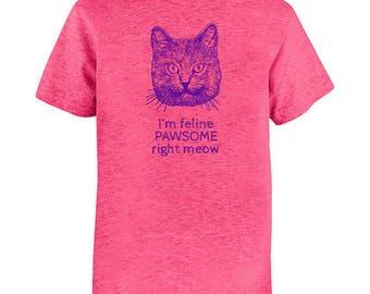 Funny Cat Shirt - Girls Youth Girl Shirt - Cat Joke  - Multiple Colors Available -  Feline Pawsome Right Meow - Gift Friendly