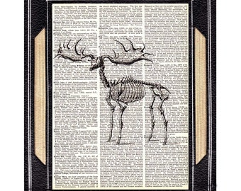ELK SKELETON animal anatomy black white upcycled vintage dictionary art print book page wall decor moose deer woodland forest animal 8x10