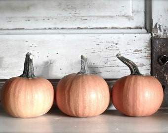 "Country Kitchen Art, Pumpkin Photo, Autumn October Print, Food Art, Orange Pumpkin Art, Rustic Decor, Primitive Farmhouse- ""Pumpkin Trio"""