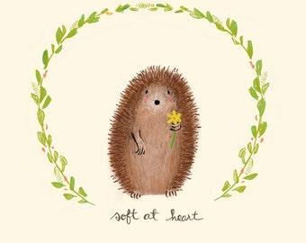 Soft at Heart