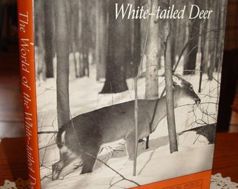 The World of the White-Tailed Deer by Leonard Lee Rue III 1962 ~ Sporting Nature Photography