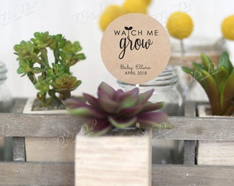20 custom watch me grow tags,printed watch me grow tags,watch me grow succulent favor tags,baby shower tags,printed watch me grow,printed