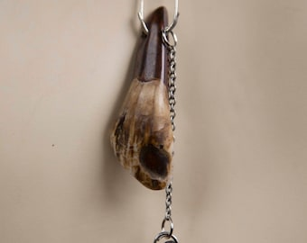 Stained Bison Tooth & Phantom Quartz Necklace