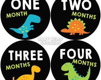 Baby Month Stickers, Monthly Baby Stickers, Monthly Milestone Stickers, Baby Monthly Stickers, Baby Belly Stickers, Dinosaurs
