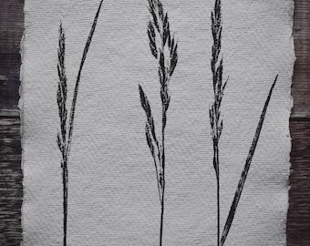Botanical mono print: Island grasses