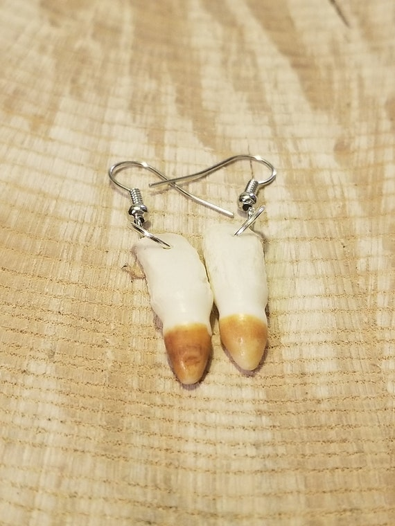 Handmade Real Alligator Tooth Silver Drop Earrings Native American Tribal Outdoor Teeth Fashion Art Fangs Collection (E197)