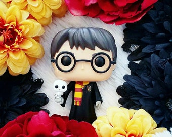 Harry Potter and Hedwig photography in Canvas or Print
