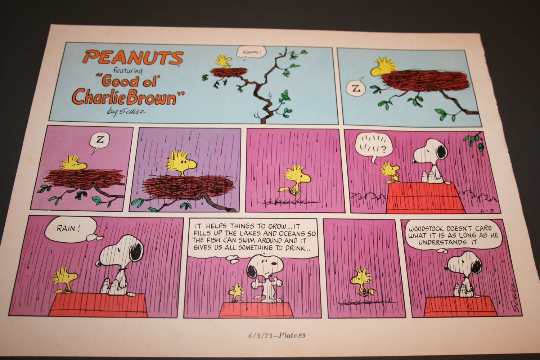 Meuble Salle De Bain Hydrofuge ~ Sieste De Woodstock Snoopy Bande Dessin E Pluie Charlie
