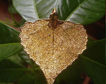 Stunning Gold Dipped Leaf Pendant