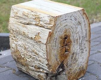 Petrified wood, partly polished, h40x30x34 cm